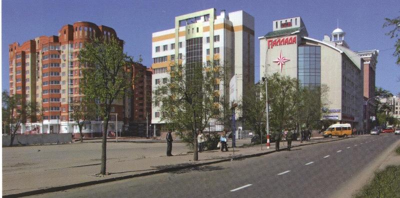 Новостройки северной части улицы Гончарова